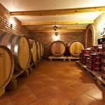 Adžić-winery-3
