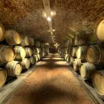 Feravino-winery-5