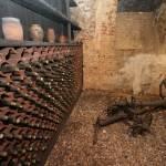 Daruvar-Badel-winery-5